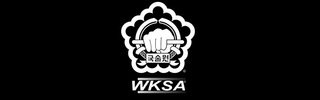 Kuk Sool Won Banner