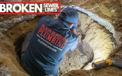 Signs You Might Have A Broken Sewer Line