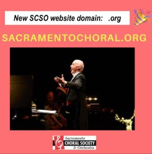 New SCSO website domain - .org