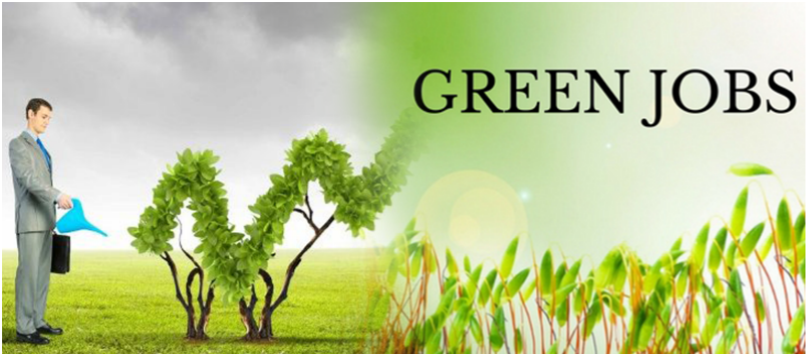 Career Opportunities in the field of Environment