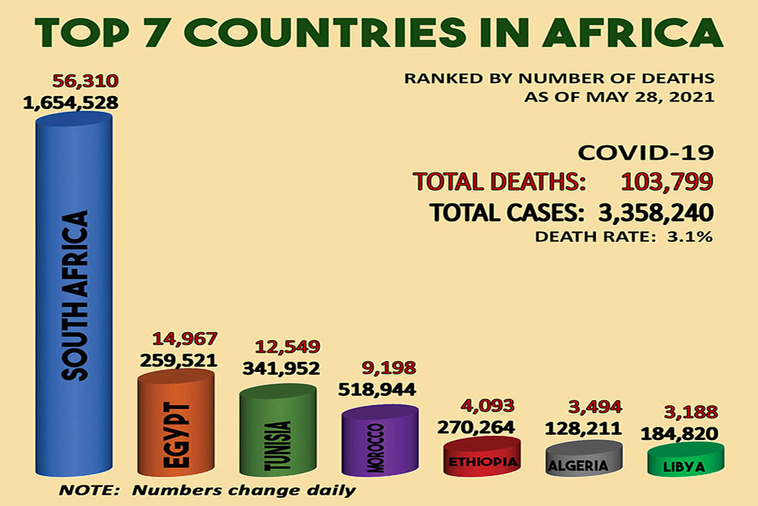 Africa has the lowest covid numbers - Top 7 countries in Africa
