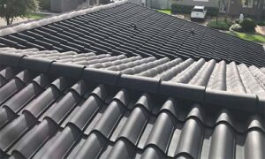 roof-painting