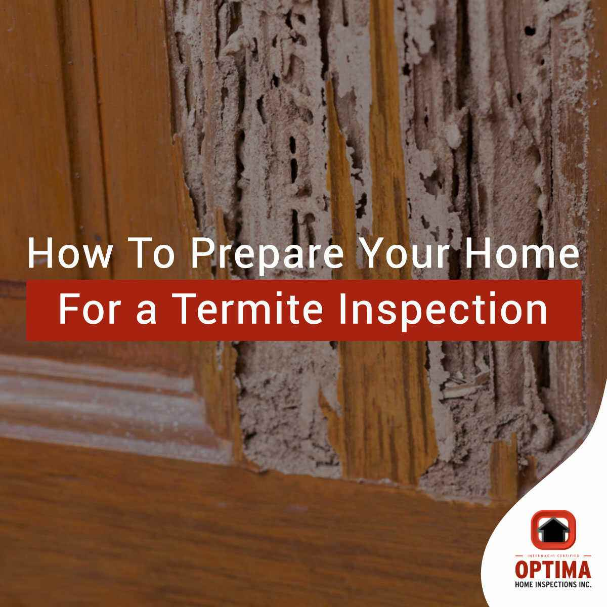 How To Prepare Your Home For a Termite Inspection