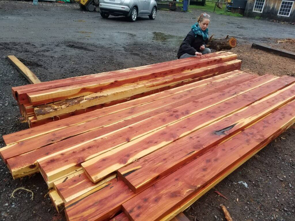 Cedar lumber from the sawmill to the kiln