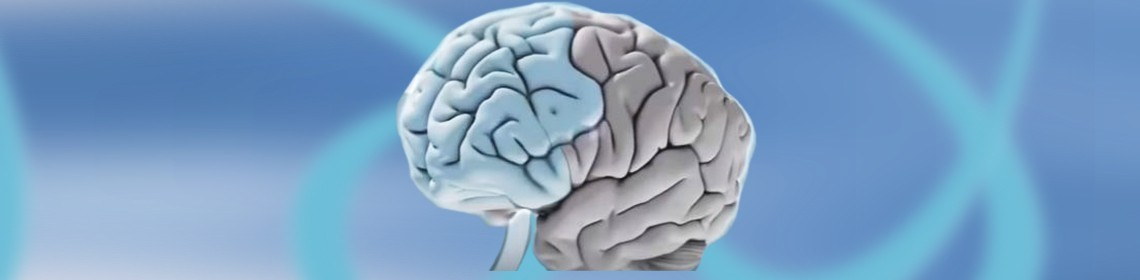 PREVENTION AND PROTECTION OF THE AGING BRAIN: AYURVEDIC SUPPORT FOR ALL