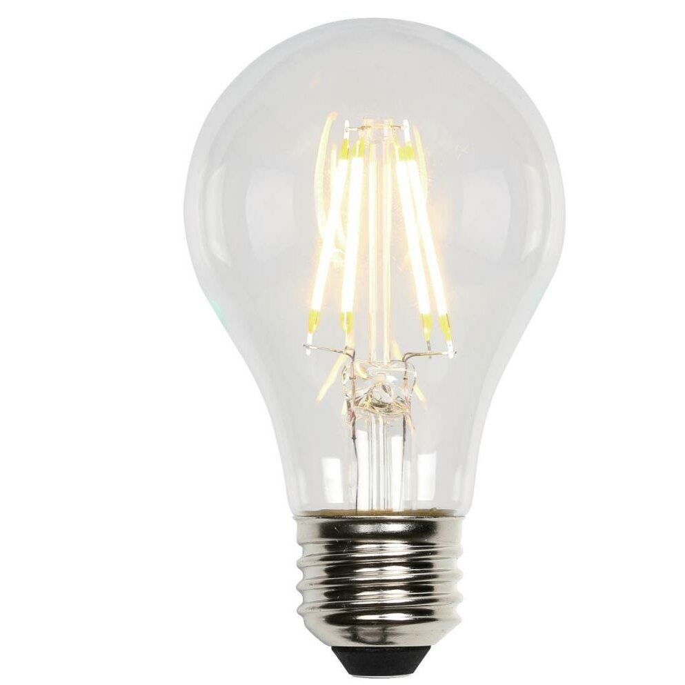 A19 Lightbulb for Our Products
