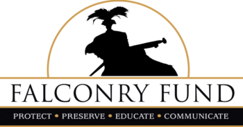 Falconry Fund Converted Final BLACK
