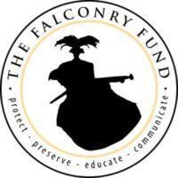 Falconry Fund logo curves