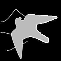 nafa-logo