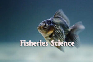 Fisheries Questions and Answers