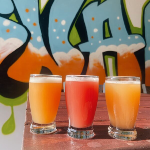 Snafu Brewing Company Sour Beer Assortment
