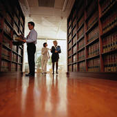 government contract & business attorneys