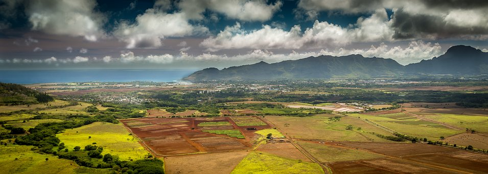 Hawaii Government Contracts Lawyers: HI Lawyer, Attorney, Attorneys, Law Firm Honolulu | Watson & Associates LLC
