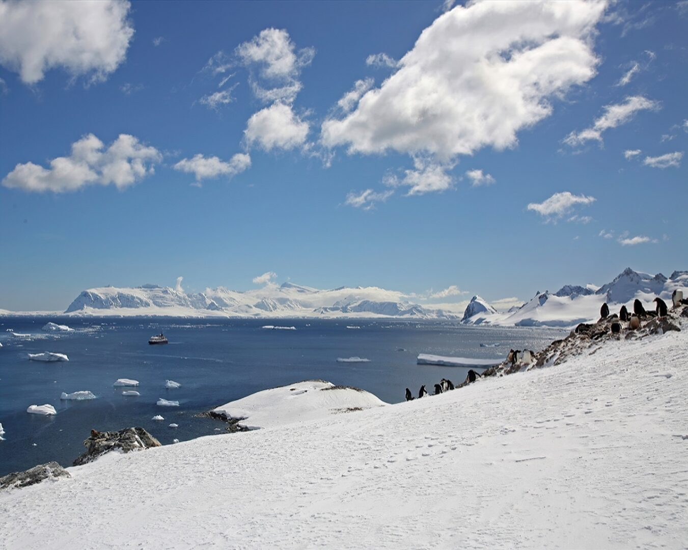 The Great White Continent-1