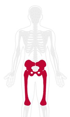 Hip Pain Treatment
