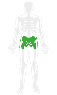 Orthopedic Hip Treatment