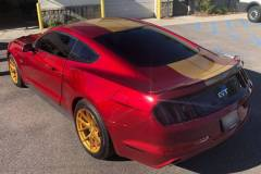 Custom Gold Stripes - Mustang