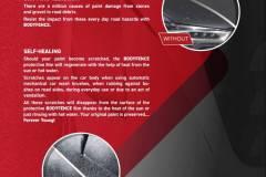 Bodyfence  Brochure