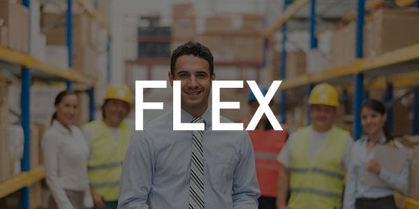 flex_01