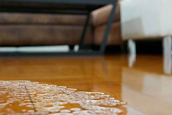 Why You Need An Expert to Provide Emergency Water Damage Service – From Dry Out Restorations