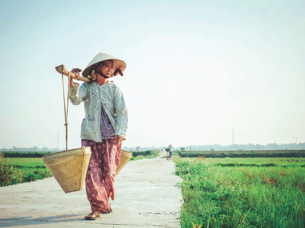 Supply Chain Vietnam