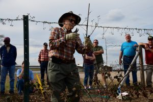 Dr. Arlie Powell showed a recent class at Petals from the Past how to grow blackberries on a trellis system. (STEVEN CALHOUN/ ADVERTISER)