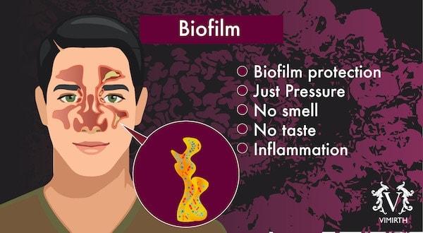 sinuses biofilm