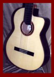 Classical Guitar Cut-a-Way