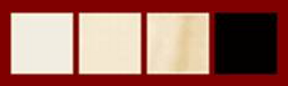 Classical Guitar Fingerboard Nut Colors