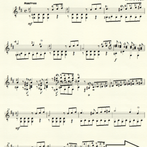 Etudes Op 111