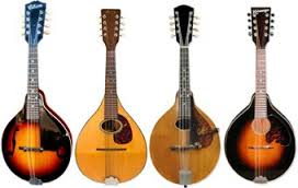 cgsmusic: Mandolin Club