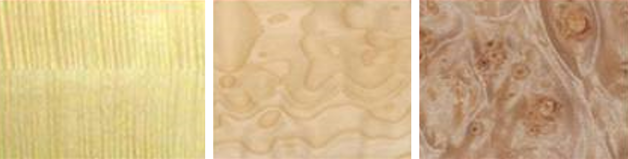 Maple for Classical Guitar
