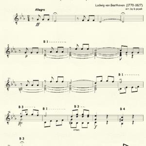 Symphony # 5 in C minor