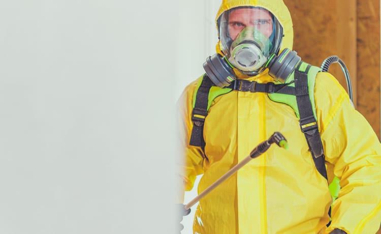 Brecs-gilbert-Biohazard-and-restoration