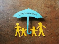 Life Insurance CPA TAX Employees