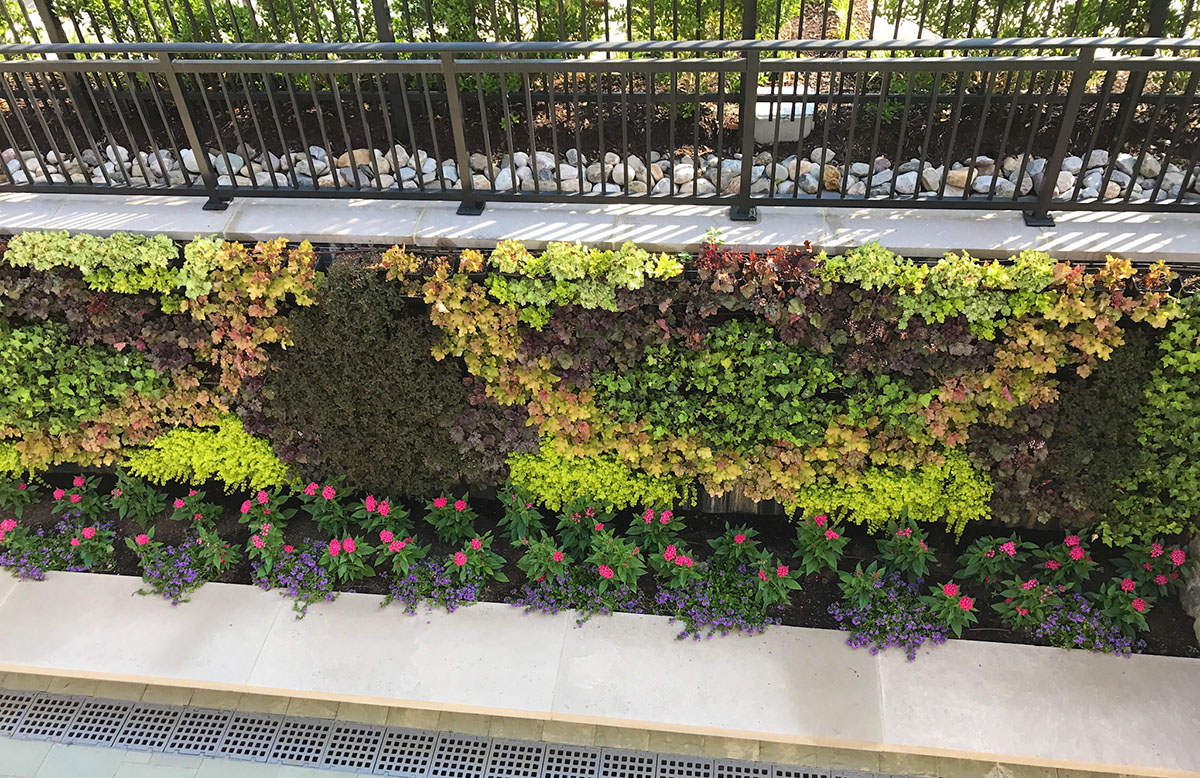 AgroSci Exterior Green Wall