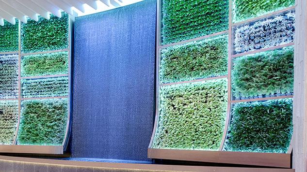 AgroSci Green Wall at Seminole Hard Rock Hotel & Casino, The Oculus, The Guitar Hotel, Hollywood, FL
