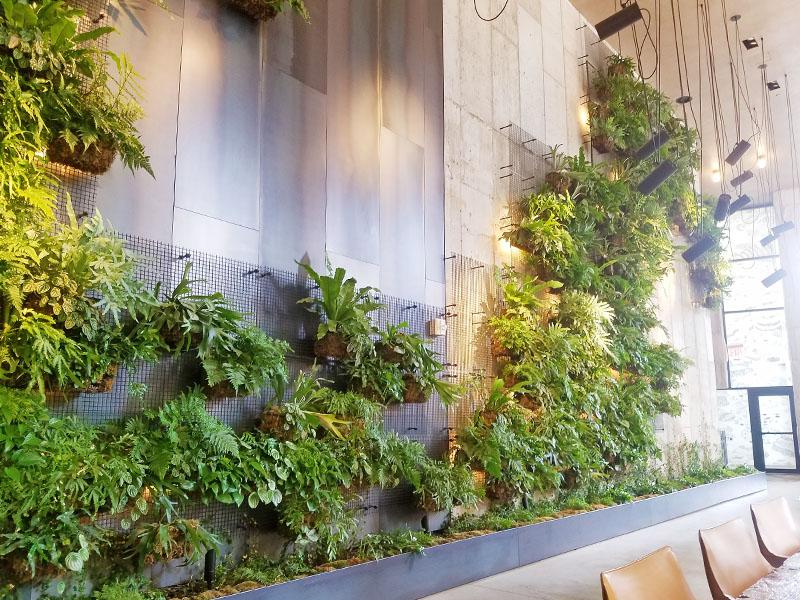 AgroSci Green Wall in Brooklyn