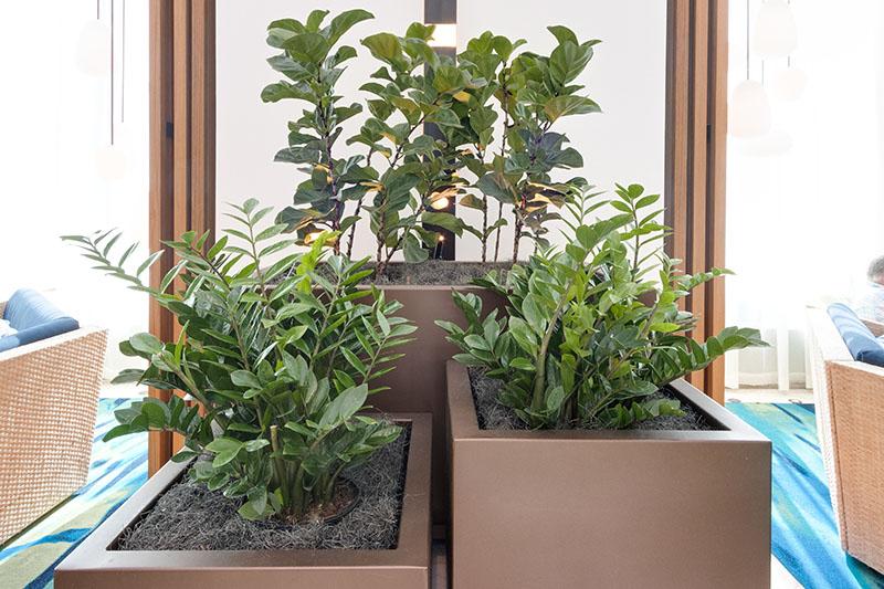 AgroSci Plantscapes