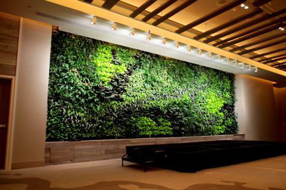 Green Wall Hartford Courant Article