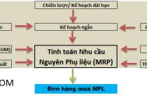 TINH TOAN NHU CAU NPL