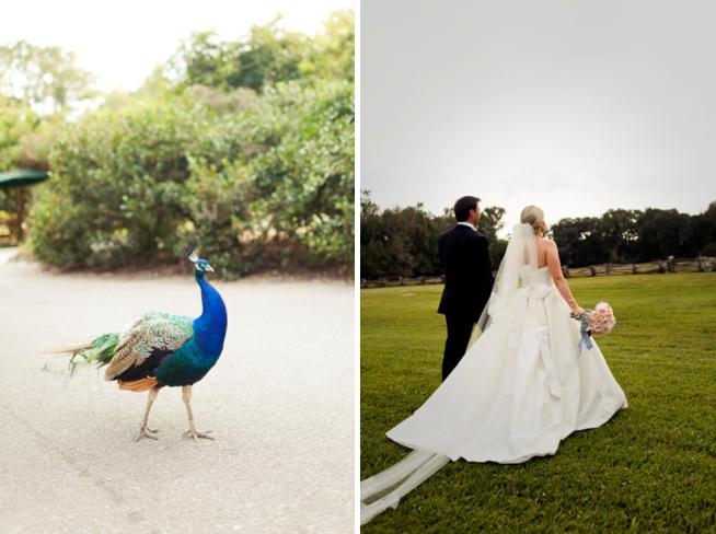 Real Charleston Weddings featured on The Wedding Row_1106.jpg