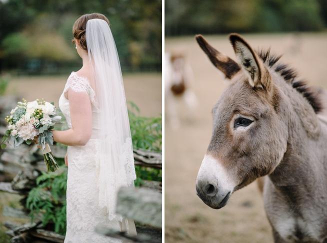 Charleston Weddings_3591.jpg