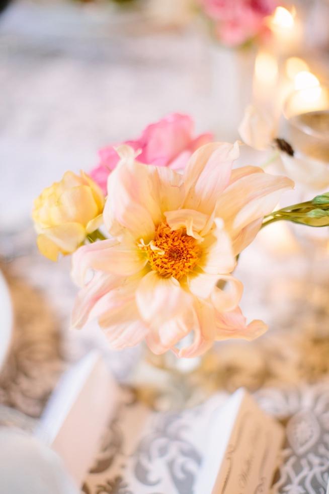 Charleston Weddings_9117.jpg