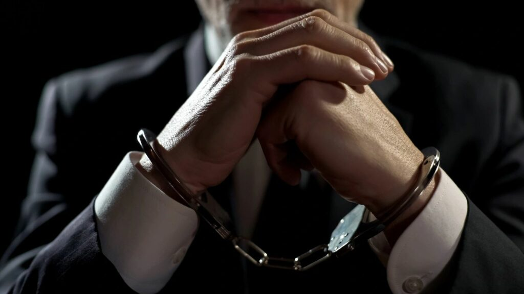 Professional bail and how it works