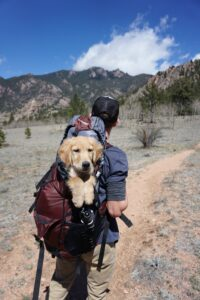A man is hiking, facing the mountains in the distance, and we see a puppy in his backpack looking at the camera.