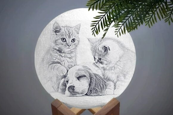 personalized pet photo in a moon lamp