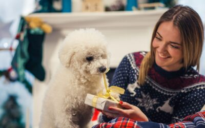 Top 5 Personalized Pet Gifts