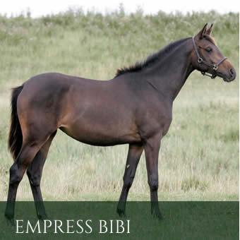empressbibiprogeny