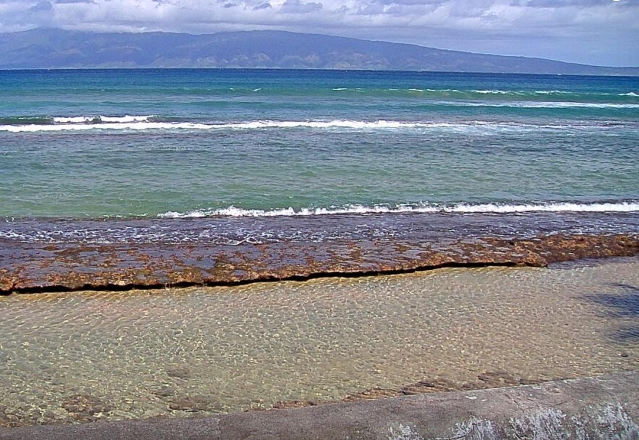 Kahekili Marine Reserve